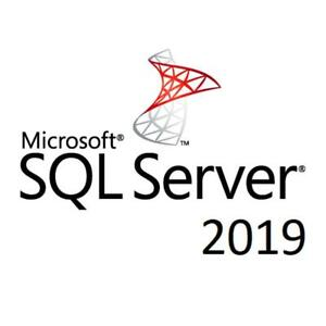 SQL Server 2019 Standard License Access 24 Cores 128 GB Memory