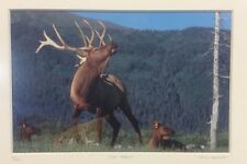 Elk Harem Framed Number 9/500 Photo Print Signed Willie Holdman FoundArtShop.com
