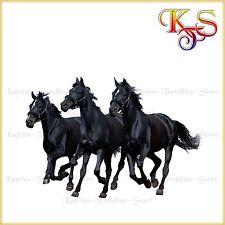 ♡♥ tolles Bügelbild Bügelbilder Hotfix   Pferd Pferde   424 Transferfolie  ♡♥