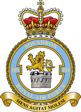 RAF 101 SQUADRON BADGE ON METAL SIGN 5 x 7 INCHES.FITS STANDARD FRAME. ALUMINIUM