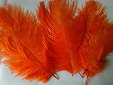 """10 pcs Duck Feathers Millinery /& Crafts 3-6/"""" Pale Pink"""