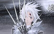 Poster A3 D Gray Man Manga Anime Cartel 03