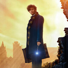 Qmx Harry Potter Prequel: Fantastic Beasts Amid the Rubble Art Print Poster New