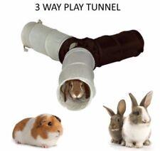 Jeux, jouets et activités cochon d'inde pour petit animal et rongeur