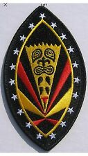 USAF Hawaii Air National Guard 199th FIGHTER SQUADRON F-22 RAPTOR Patch