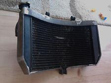 Radiator Cage, protector, guard STUNT - HONDA CBR F4,F4I,F4ISport .
