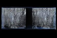 Plaque stéréo Negatif Vintage stereoview Negatif N22