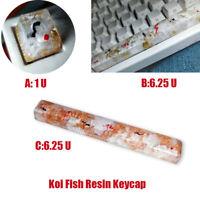 Koi Fish Resin Keycap Backlit Keycaps for Cherry MX Mechanical Keyboard 1U 6.25U