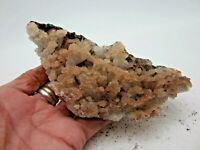 HEMIMORPHITE Mine Run Mapimi  Durango Mexico 285g