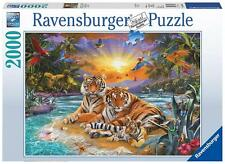 Ravensburger 16624 High Quality Tiger Family 2000 Pieces Jigsaw Puzzle Game