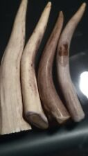 Deer & caribou antler Tips  Craft supplies 5 - 6 inches each P6