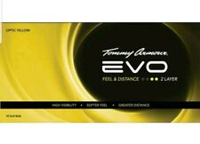 Tommy Armour EVO Golf Balls 18 COUNT OPTIC Yellow 2 LAYER NEW