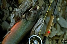 Fly Fishing & More by the Old Masters 36 eBooks on CD