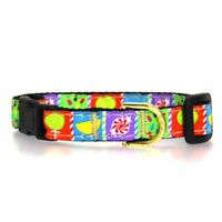 "Dog Puppy - Up Country - Made in USA - Sweetie Candy Collar L (15-21""); Wide 1"""