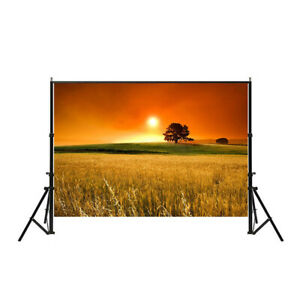 Nature Sunset Photography Backdrops Wall Art Prints Wheat Field Background Props