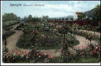 Chemnitz alte Ansichtskarte 1915 gelaufen Partie im Rosarium im Stadtpark Park