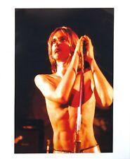 "IGGY POP Original 20"" x 24"" MICK ROCK Photograph STOOGES RAW POWER LP Session"