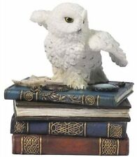 "5"" Snow Owl w/ Books Statue Trinket Box Wild Life Animal Figure Wisdom Knowledge"
