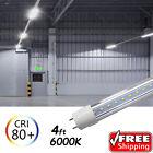 10 PACK LED G13 4FT 4 Foot T8 Tube Light Bulbs 18W 6500K Clear LENS Fluorescent