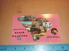 South Carolina Map Comic Flag Fort Cannon Dam Sumter Santee cooper State Flower