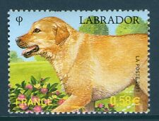TIMBRE 4545 NEUF XX LUXE - LES CHIENS - SERIE NATURE - LE LABRADOR