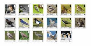 GEURNSEY  2021 BIRDS  DEFINTIVES   BIRDS SET OF 17 STAMPS  MNH