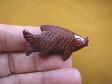 (Y-Fis-Tr-554) Red Jasper tropical Fish gemstone carving Love fishes aquarium