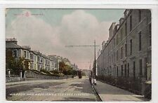 WINDSOR AND ABERLEMNO TERRACES, DUNDEE: Angus postcard (C12571)
