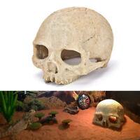 Aquarium Resin Skull Head Cave Ornament Fish Tank Underwater Decoration Deco FE