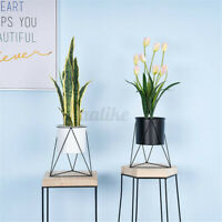 Garden Geometric Metal Flower Pot Stand Chic Indoor Plant Holder Display Planter