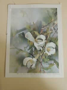 Signed Lithograph. Botanical