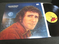 Tim Buckley Look At The Fool '74 Discreet LP 1A/1B Original 1st ds2201 jeff rare