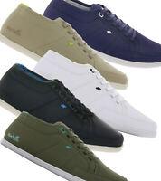 Boxfresh Sparko Sneaker Turn-Schuhe Herren Freizeit-Schuhe Echtleder oder Textil