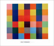 Ellsworth KELLY Fast Forward Sanary Museum Exhibition Poster