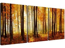 Orange Forest Woodland Trees Canvas Prints Set of 3 for your Hallway