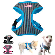 Nylon Dog Harness and Leash Puppy Cat Walking Vest for Small Medium Large Dogs