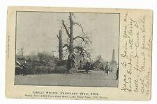 More details for great storm 1903 phoenix park