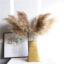 20 Pcs Natural Dried Pampas Grass Reed Flower Bunch Wedding Bouquet Decors UK