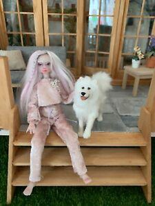 1/12 dolls house furred samoyed dog ooak