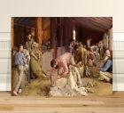 "Classic Australian Fine Art ~ CANVAS PRINT 24x18"" Shearing Rams by Tom Roberts"