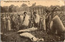 Vintage Postcard field workers weighing cotton near Denison Tx postmarked 1908