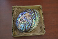 """BLUE PAUA ABALONE SHELL SMUDGING WICCAN SPIRITUAL 2-SIDED POLISHED 5"""""""
