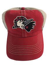MiLB Fayetteville Woodpeckers '47 Brand Closer Snapback Adj. Mesh Back Hat Cap