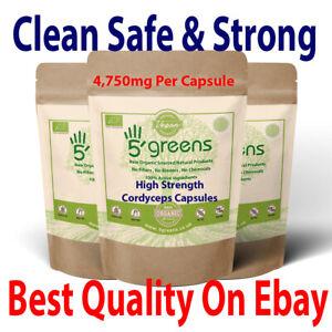 Cordyceps Mushroom Capsules 4750mg - 142.5mg Polysaccharide Strong & Effective