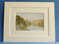 CLIVEDEN WOODS NR MAIDENHEAD BUCKS 1920 VINTAGE DOUBLE MOUNTED PRINT S PALMER