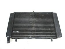 RADIATORE APRILIA RS 125 2003 - 2005 AP8102704 RADIATOR