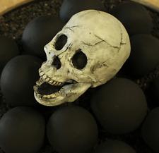 Fire Brick Ceramic Skull - White