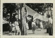 PHOTO ANCIENNE - VINTAGE SNAPSHOT - SPORT VOLLEY BALL EXTÉRIEUR ARBRE FILET