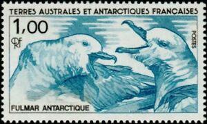 French Areas Antarctica Vintage 1989 Bird Blausturmvogel Birds M 249
