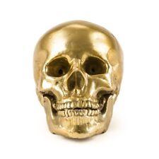 Seletti Diesel Collezione Wunderkrammer wunderkammer Mod.Human Skull Teschio